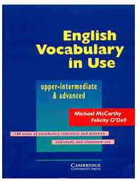 english vocab in use